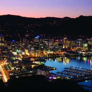 Business Insights | Wellington in Review