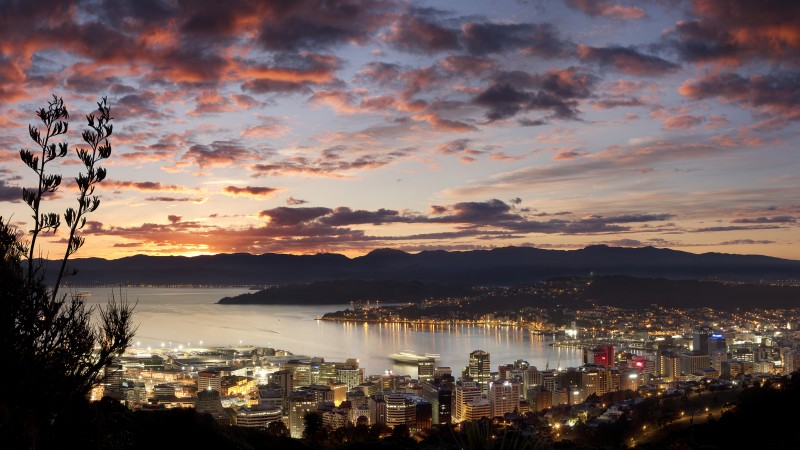 wellington city at dawn panorama v2
